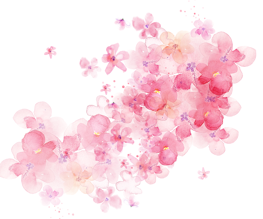 Watercolor Floral 183 Free Image On Pixabay
