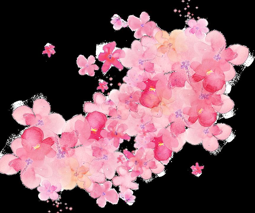 aquarell blumen  u00b7 kostenloses bild auf pixabay Steak Vector Free blood splat vector free