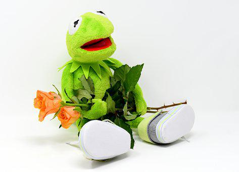 Kermit images pixabay download free pictures kermit greetings frog get well soon m4hsunfo Gallery