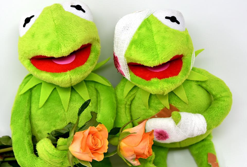 Kermit greetings frog get well free photo on pixabay kermit greetings frog get well soon roses soft toy m4hsunfo