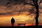 zachód słońca, drzewo, silhouette