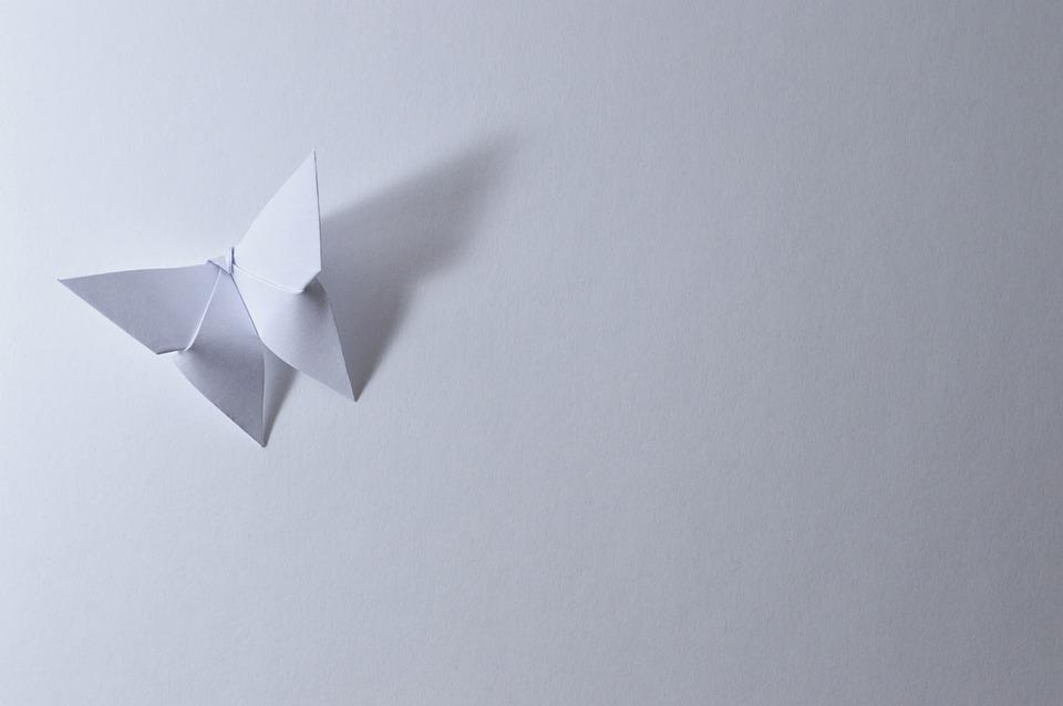Origami, Schmetterling, Blatt, Papier, Bent, White