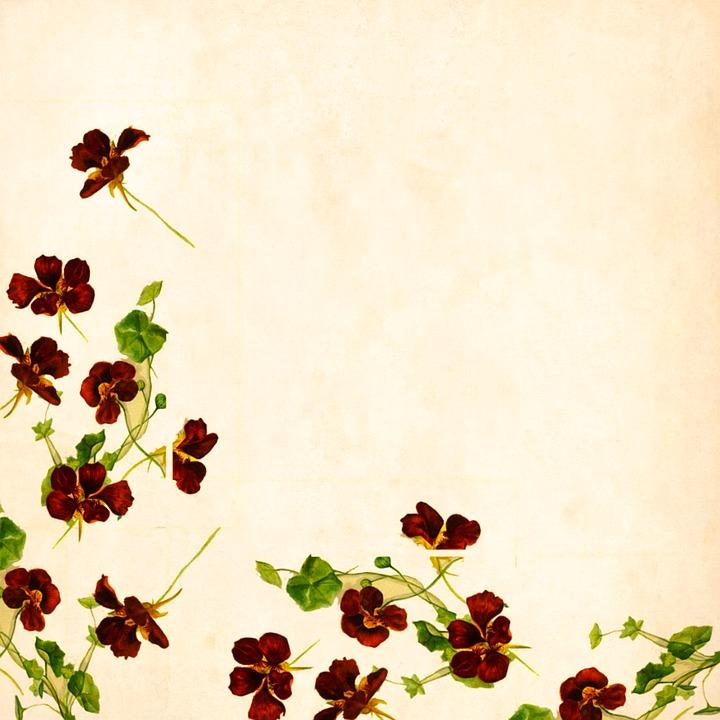 Fiore Sfondo Vintage Immagini Gratis Su Pixabay