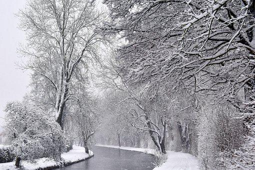 Winter, Schnee, Kalt, Frost