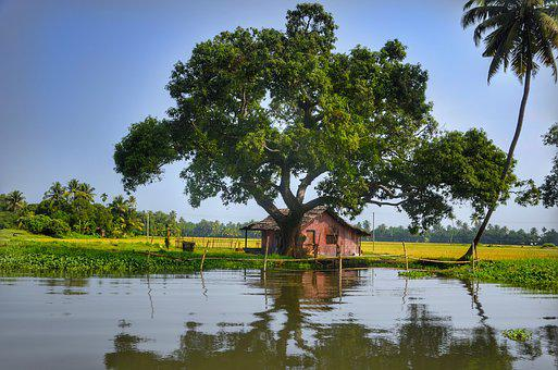 kerala images pixabay download free picturesalleppey, backwaters, kerala, india