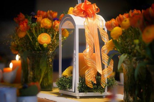 100 Gambar Tanaman Bunga Lilin Tanaman Gratis Pixabay