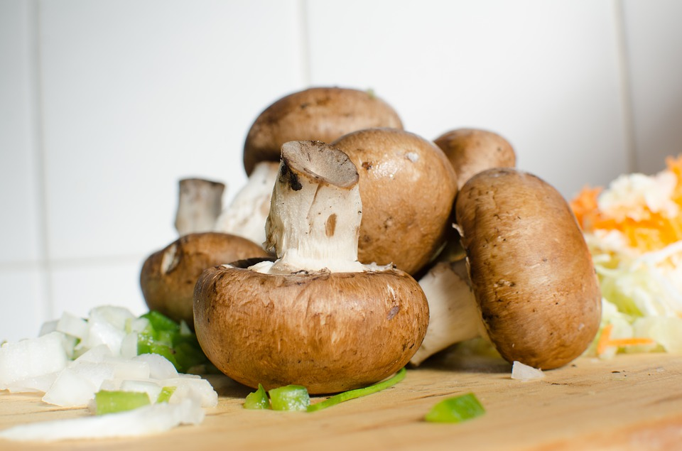 Mushrooms | Grow Mushrooms In Your Home With These Five Easy Steps | See more at: http://gardenseason.com/grow-mushrooms-in-your-home-with-these-five-easy-steps