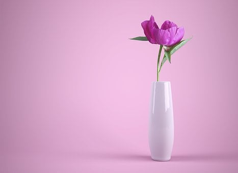 Flower vase images pixabay download free pictures flower vase colorful pink thank you mightylinksfo