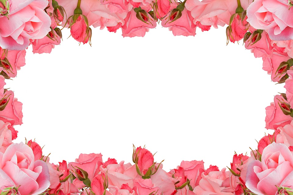 Roses Frame Flower Rose · Free photo on Pixabay