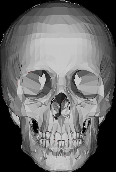 Schädel Geometrischen Kopf · Kostenlose Vektorgrafik auf Pixabay