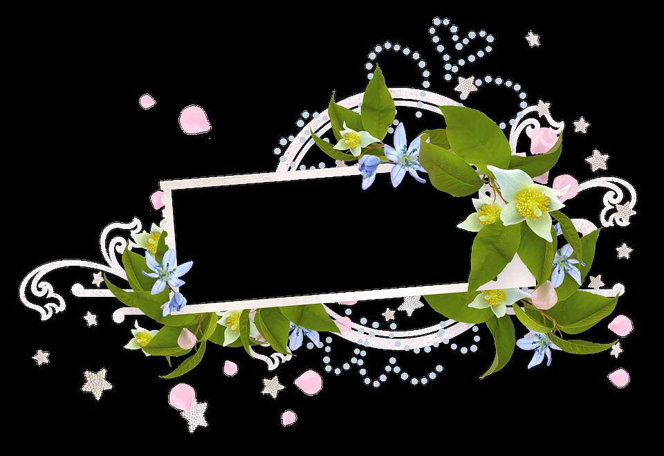 春 ブルーム 春の花 Pixabayの無料写真