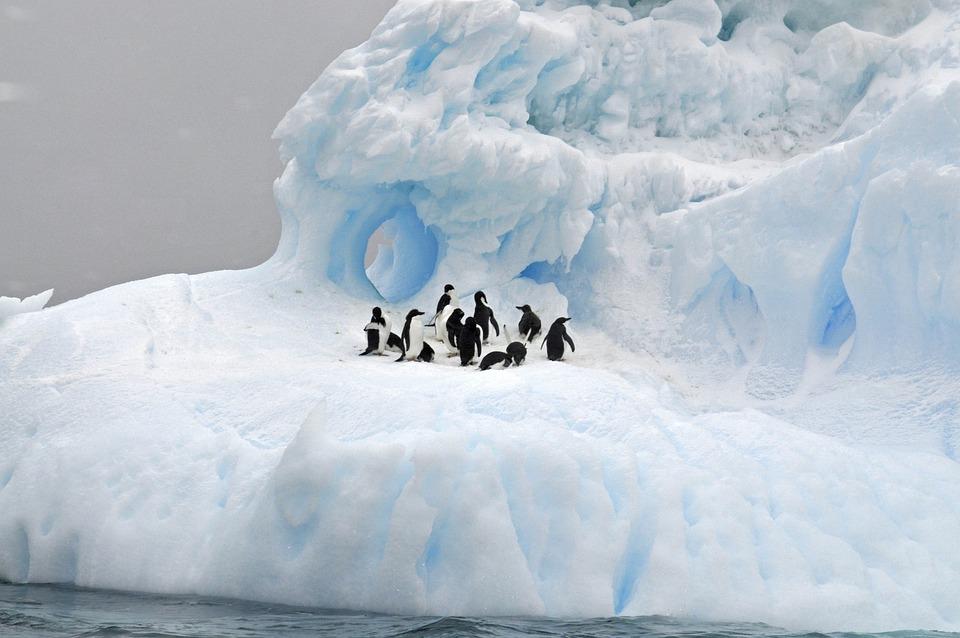 Glace, Neige, Hiver, Froid, Iceberg, Gelé, Glacier