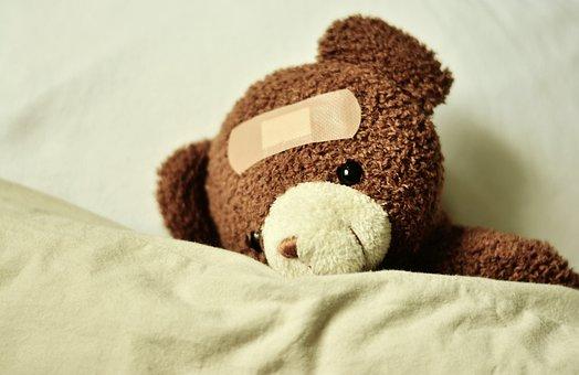 teddy-3183563__340.jpg