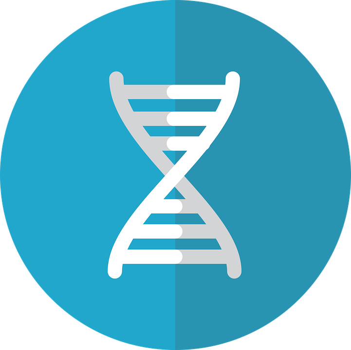 gene icon genetics  u00b7 free vector graphic on pixabay