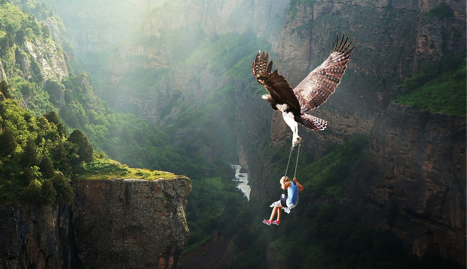 Nature, Waters, Flying, Adventure, Adler, Fantasy