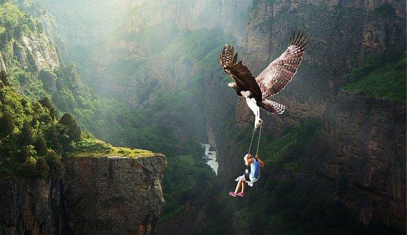 Natur, Gewässer, Fliegen, Abenteuer