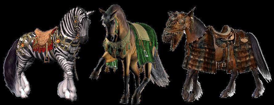 Horse Horses Pony Ponies Equestrian