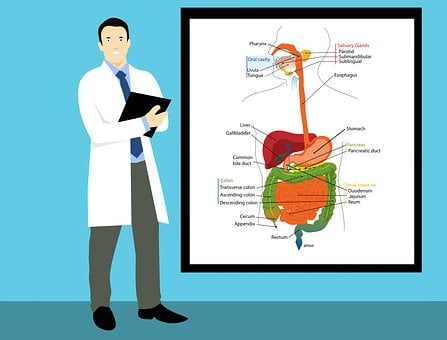 医師, クラス, ボード, 腫瘍学, 整形外科の, アメリカ, 診断
