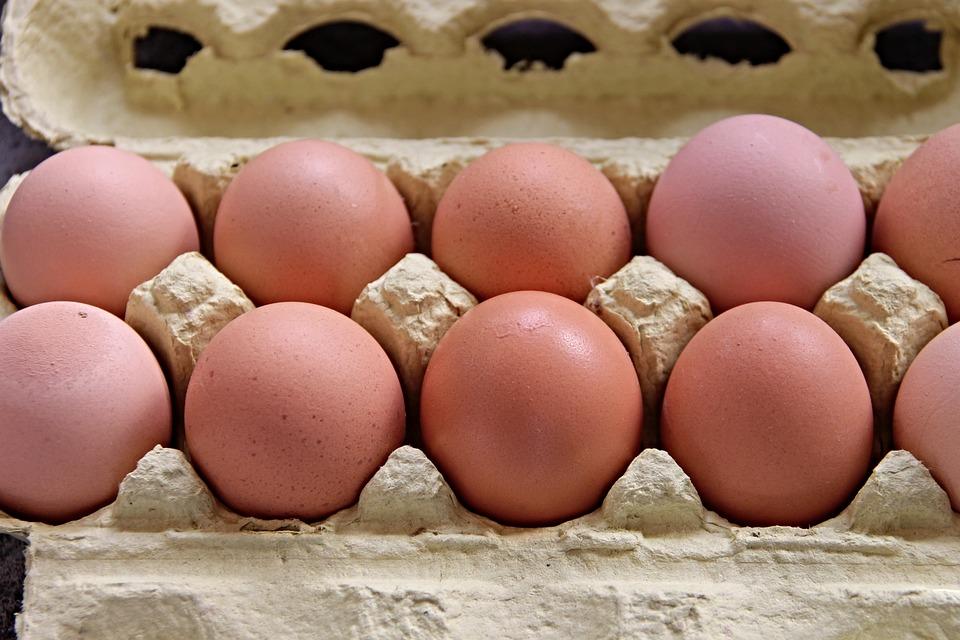 Egg carton: an eternal eco-friendly packaging