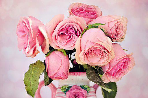 Flower vase images pixabay download free pictures roses flowers floral love petal mightylinksfo