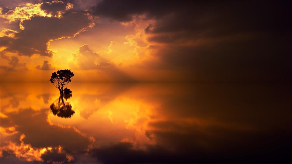 サンセット, 夜明け, 太陽, 空, 木, 日光, 夕暮れ, オーシャン, ミラー, 反射, 残光, 夕方の空