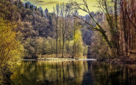 森林, 湖, 性质, 树木, 水, 池塘, 河风景, 镜像, 河, 浪漫, 心情