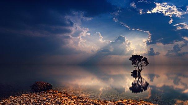 Ηλιοβασίλεμα, Αυγή, Ουρανό, Δέντρο