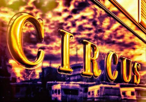Circus, Fun, Colorful, Funny, Ring