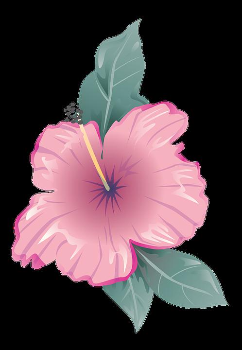 Flower icon symbol free image on pixabay flower icon symbol design flat decoration mightylinksfo Choice Image