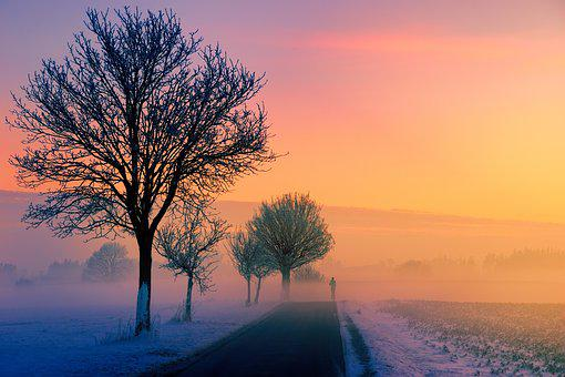 Winter, Fog, Dawn, Sunset, Nature