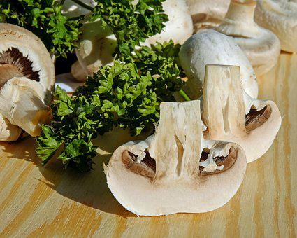 Mushrooms, White Mushroom, Edible, Plant