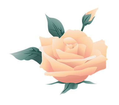 Flower, Symbol, Rose, Nature, Floral