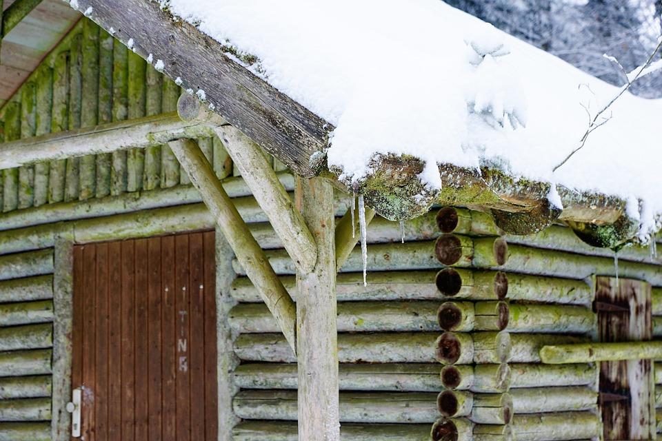 木 森の中 家 , Pixabayの無料写真