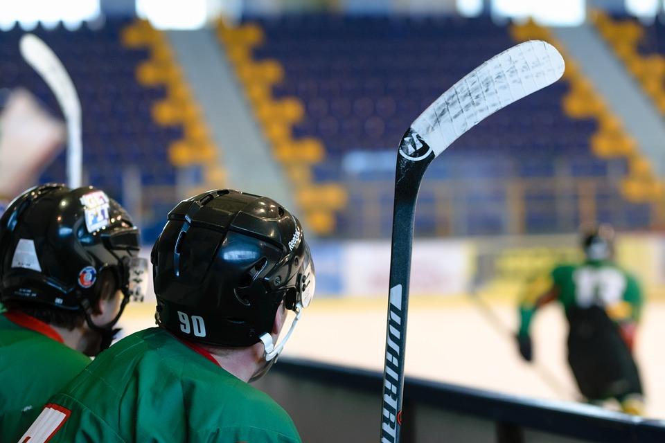 Hockey Game, Stadion, Ice Skating Rink, Hall, Ice
