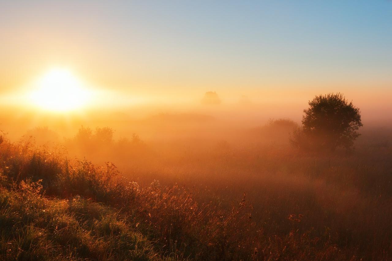 рассвет солнце встает картинки смотреть предлагает