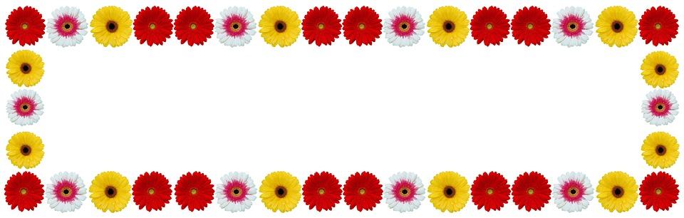 Flower Frame Gerbera Color · Free photo on Pixabay