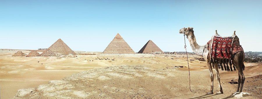Desert, Camel, Sand, Pyramid, Dry
