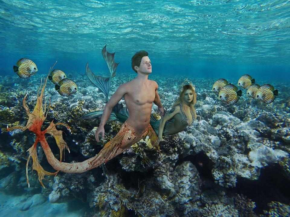 Onderwater, Ocean, Zee, Wateren, Tropische, Coral, Rif