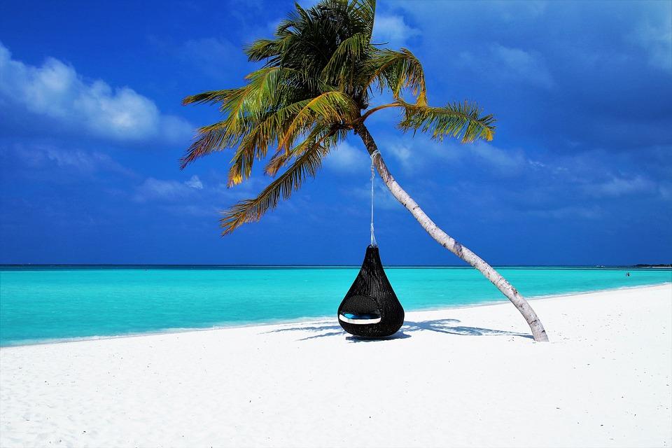 Maldivas, Palmera, Hamaca, Playa, Arena, Costa, Isla
