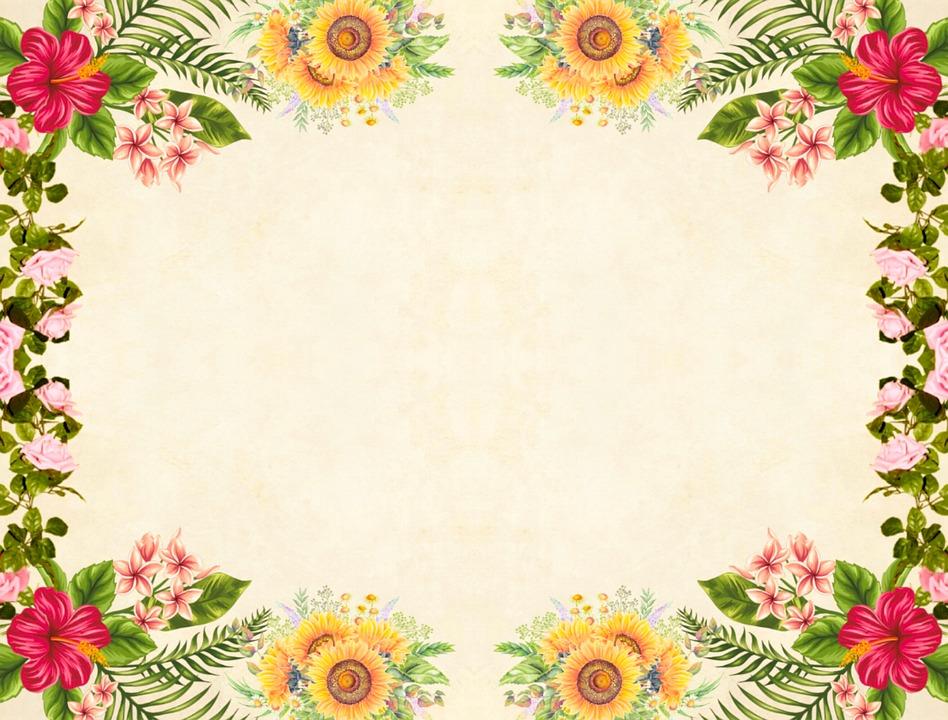 FlowerBackgroundFloralC2B7FreeImageOnPixabay