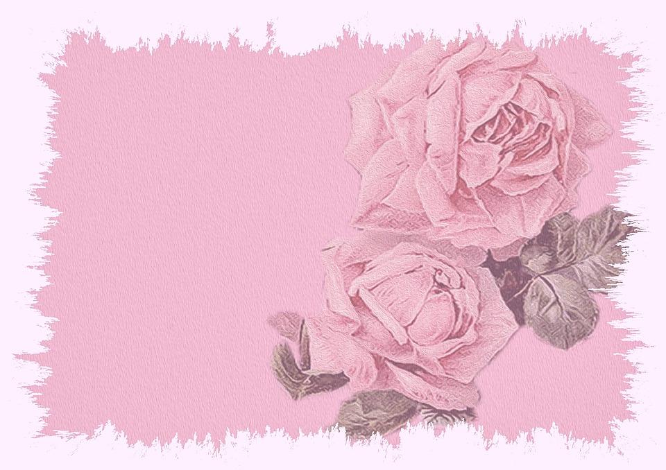 Plano De Fundo Rosa Convite Página Imagens Grátis No Pixabay