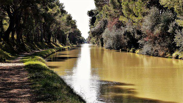 Nature, France, Aude, Canal Midi