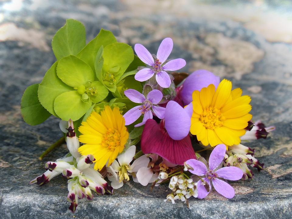 Ramo De Flores Silvestres Foto Gratuita No Pixabay