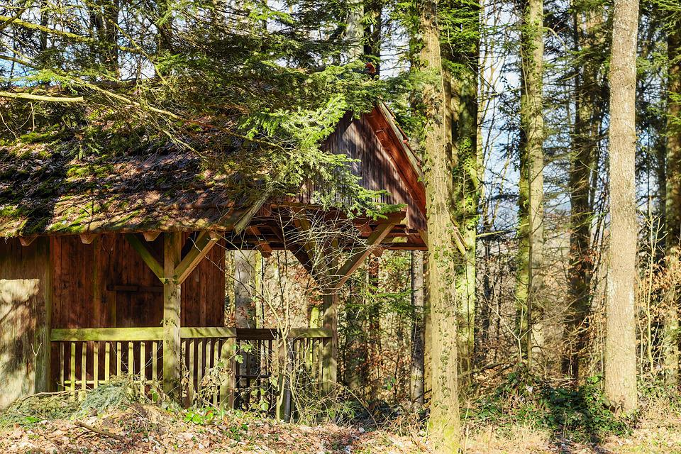 Log Cabin, Forest Lodge, Seefeld, Cozy, Hut, Wood, Old