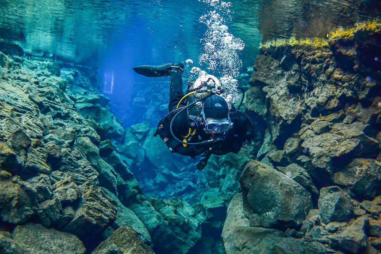 многие подводный мир норвегии фото почему