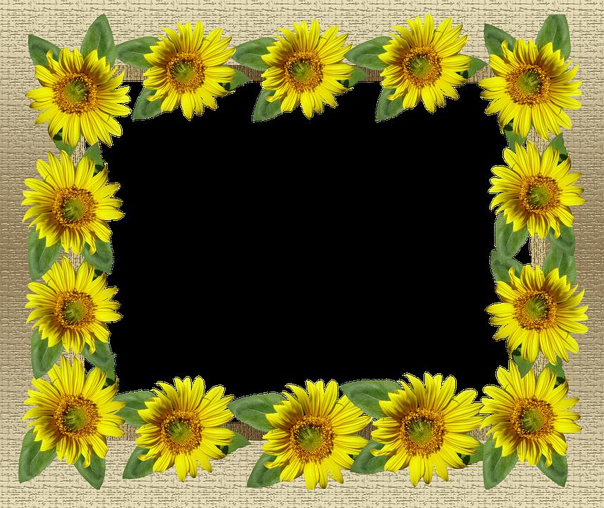 Frame Gold Sunflower Border · Free photo on Pixabay