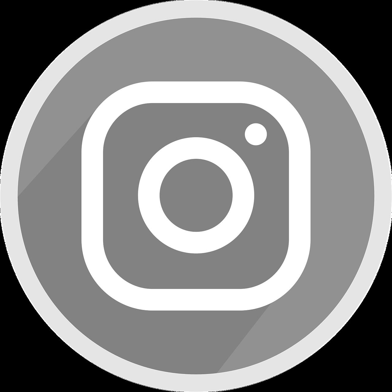 Logo Instagram Icon Grey Free - Free vector graphic on Pixabay