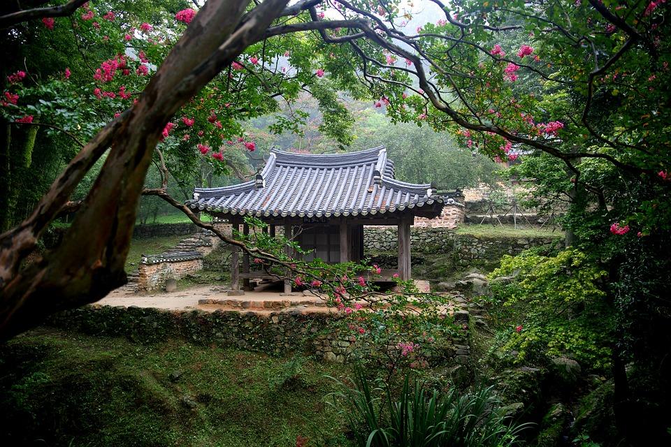 Ảnh đẹp cảnh đẹp hàn quốc : Vườn damyang