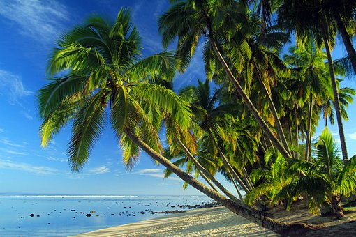 1000 Spiaggia Tropicale E Tropicale Immagini Gratis Pixabay