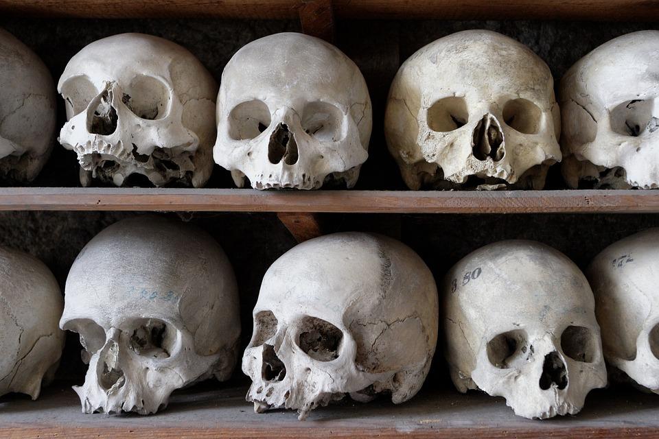 Schädel Rahmen Knochen · Kostenloses Foto auf Pixabay